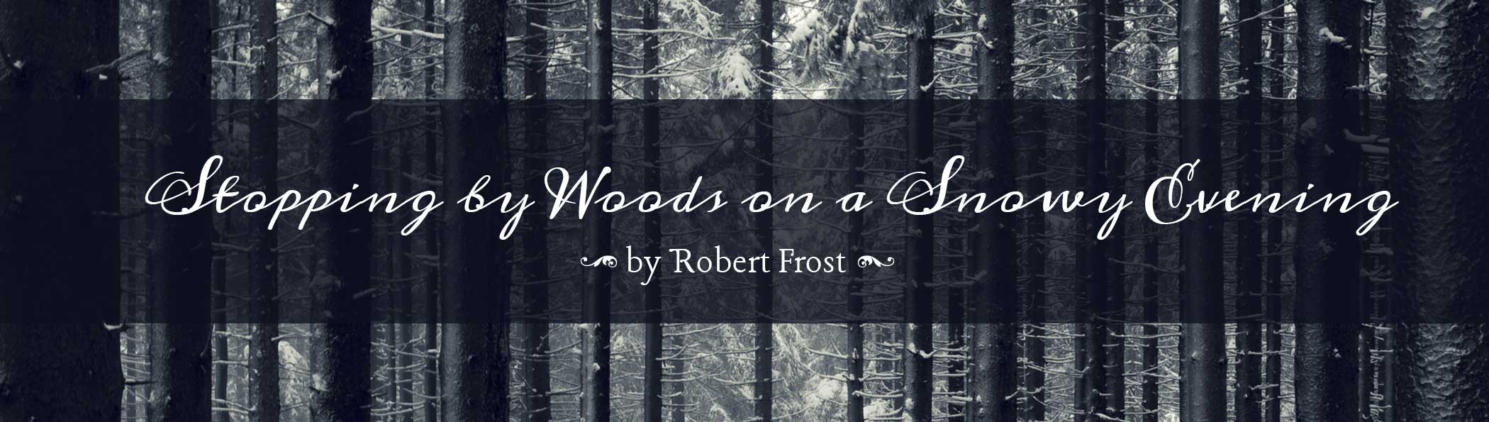 snowy-woods_banner